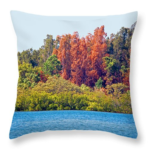 Ocean Throw Pillow featuring the mixed media The Nature Coast by Donna Proctor