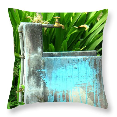 Water Throw Pillow featuring the photograph The Neighborhood Water Pipe by Ian MacDonald