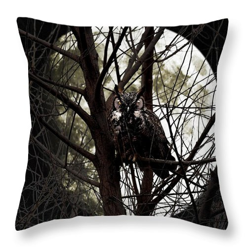Animal Throw Pillow featuring the photograph The Night Owl and Harvest Moon by Wingsdomain Art and Photography