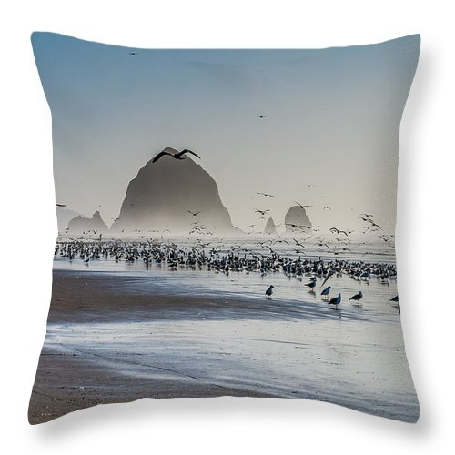 Ocean Throw Pillow featuring the photograph The Ocean Birds by Donald Pash