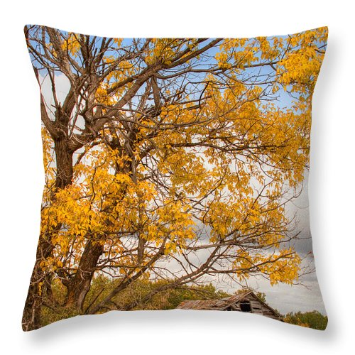 Canada Throw Pillow featuring the photograph The Old Homestead by Colette Panaioti