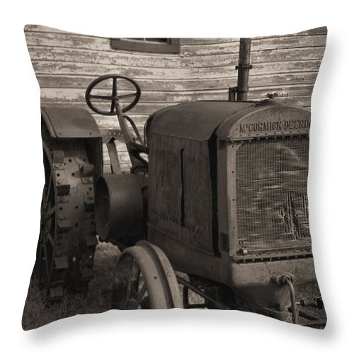 Abandoned Throw Pillow featuring the photograph The Old Mule by Richard Rizzo