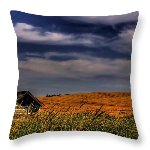 Landscape Throw Pillow featuring the photograph The Old Pumphouse by David Patterson