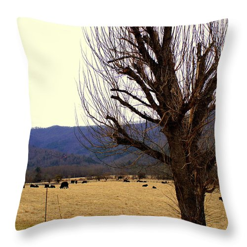 Western Throw Pillow featuring the photograph The Old Tree In Winter by John Wall