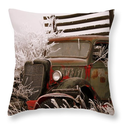 Truck Throw Pillow featuring the photograph The Old Truck by JoJo Photography