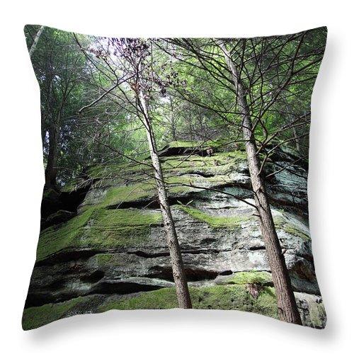 Nature Throw Pillow featuring the photograph The Original My Space by Amanda Barcon