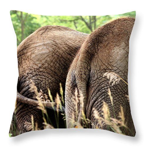African Elephant Throw Pillow featuring the photograph The Other Side by Angela Rath