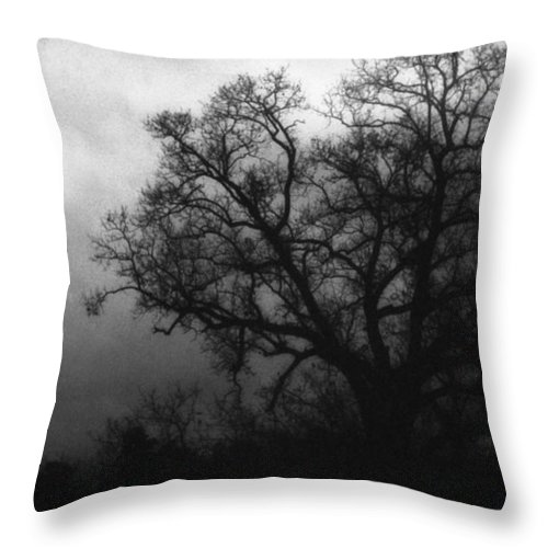 Eerie Throw Pillow featuring the photograph The Other Side by Richard Rizzo