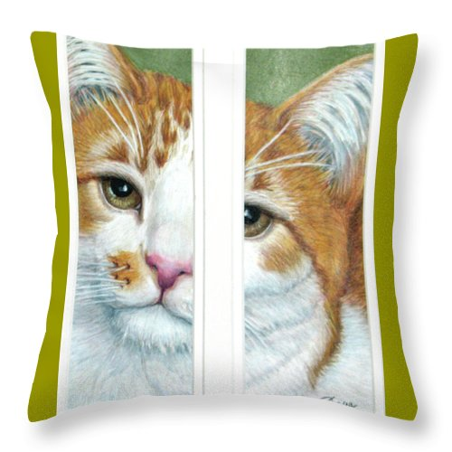 Fuqua - Artwork Throw Pillow featuring the drawing The Otherside by Beverly Fuqua