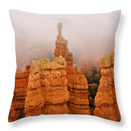 Brycecanyon Throw Pillow featuring the photograph The Over Acheiver by Ann Boulais