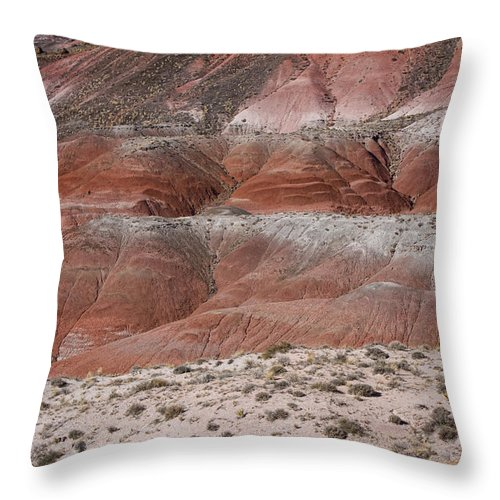 Arizona Throw Pillow featuring the photograph The Painted Desert 8020 by James BO Insogna