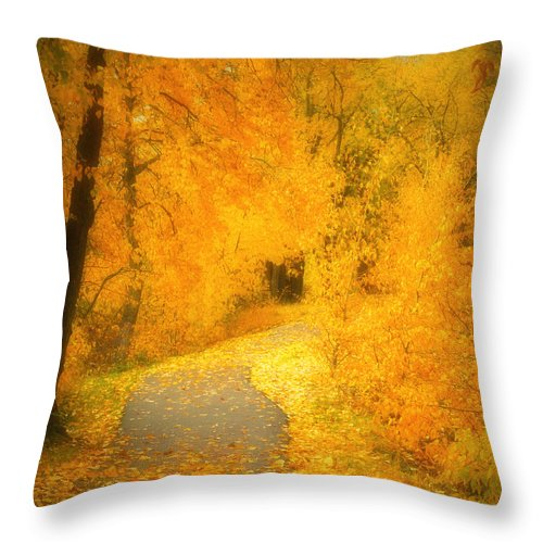Autumn Throw Pillow featuring the photograph The Pathway Of Fallen Leaves by Tara Turner