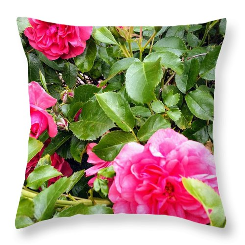 Botanical Flower's Nature Throw Pillow featuring the photograph The peaceful place 10 by Valerie Josi