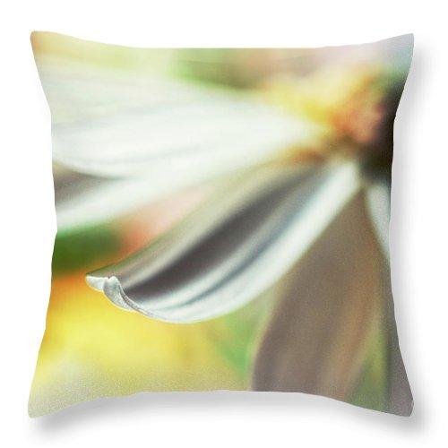 Petal Throw Pillow featuring the photograph The Petal II by Silvia Ganora