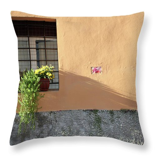 Rome Throw Pillow featuring the photograph The Plant by Munir Alawi