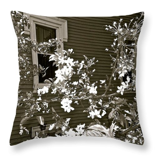 Black And White Throw Pillow featuring the photograph The Poetry Of Architecture 3 by Elizabeth Tillar