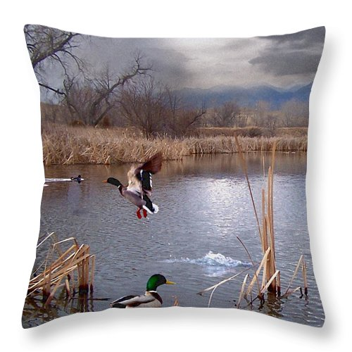 Ponds Throw Pillow featuring the mixed media The Pond by Bill Stephens