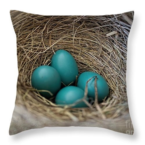 Robin Eggs Throw Pillow featuring the photograph The Prettiest Shade Of Blue by Barbara McMahon