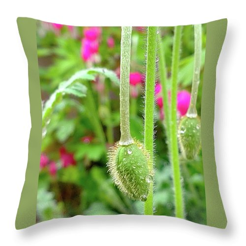 April Throw Pillow featuring the photograph The Promise Of April Showers by Bruce Carpenter