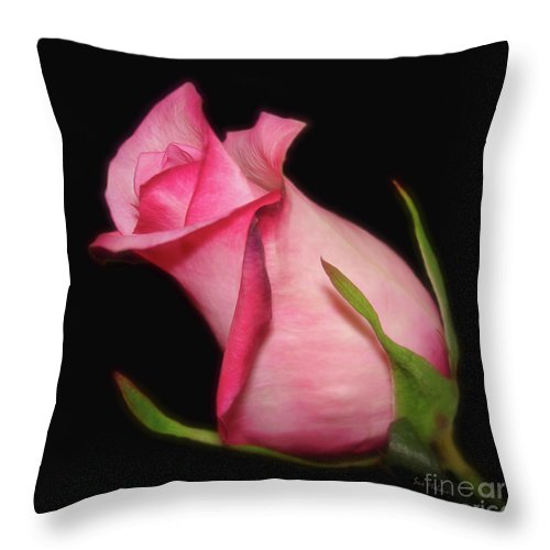 Rose Throw Pillow featuring the photograph The Promise Of New Life by Sue Melvin