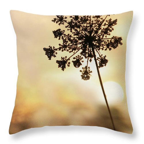 Flower Throw Pillow featuring the photograph The Queen At Sunrise by Lori Deiter