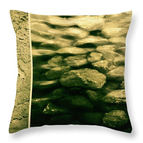 Rocks Throw Pillow featuring the photograph The Quiet Underneath by Dana DiPasquale