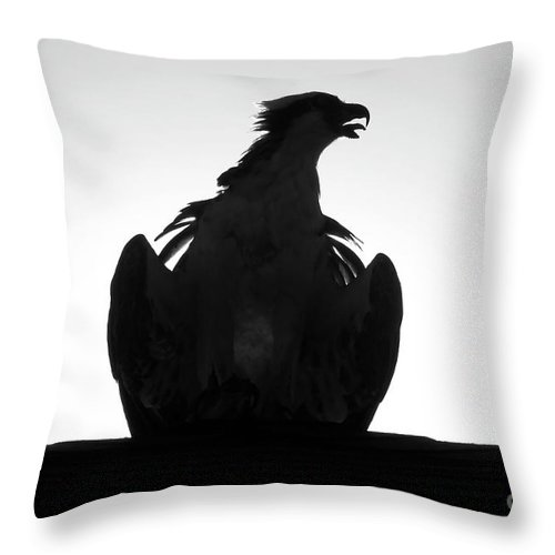 Raptor Throw Pillow featuring the photograph The Raptors Call by David Lee Thompson