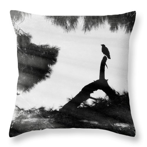Raven Throw Pillow featuring the photograph The Raven by V-Light Photography