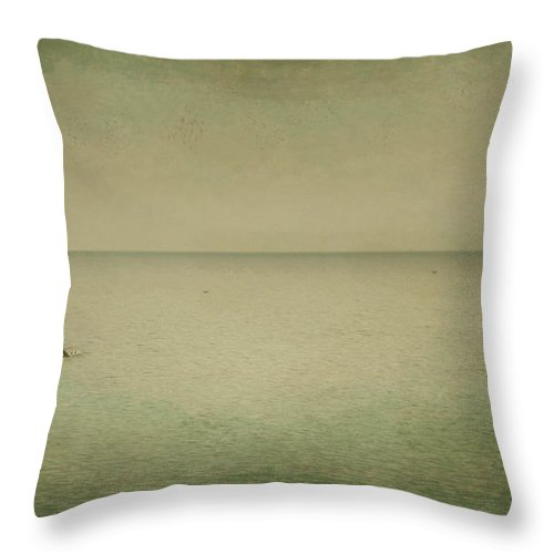 Sea Throw Pillow featuring the photograph The Recesses Of The Deep by Dana DiPasquale