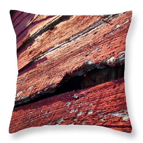 Barn Throw Pillow featuring the photograph The Red Barn 1 by Richard Larson