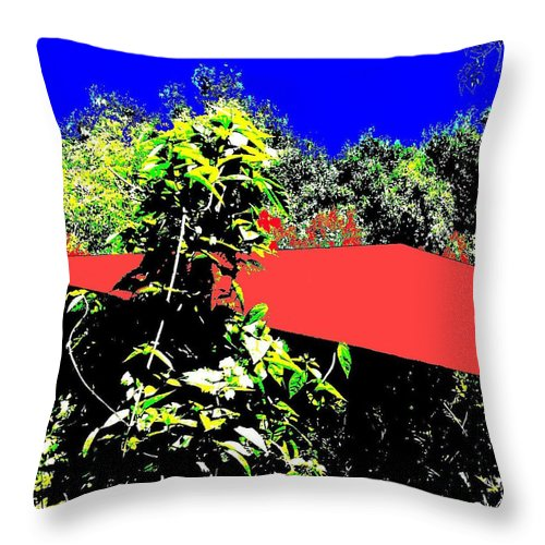Square Throw Pillow featuring the digital art The Red Roof by Eikoni Images