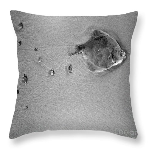 Fish Throw Pillow featuring the photograph The Relief by Angel Ciesniarska
