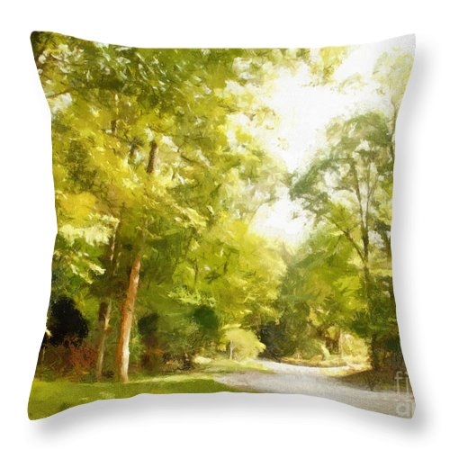 Road Throw Pillow featuring the photograph The Road Home by Paulette B Wright