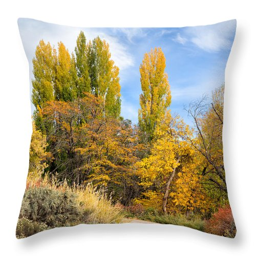 Country Throw Pillow featuring the photograph The Road To Josie's Cabin by Kathleen Bishop