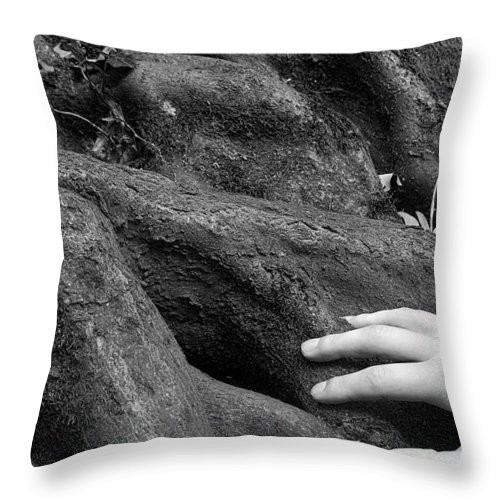 Nature Throw Pillow featuring the photograph The Roots by Daniel Csoka