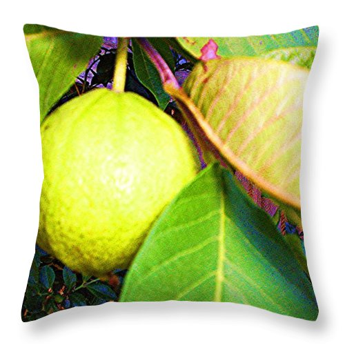 Rose Apple Throw Pillow featuring the digital art The Rose Apple by Winsome Gunning