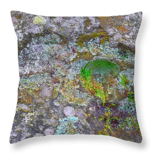 France Throw Pillow featuring the photograph The Sacred Mountain by Jean-luc Bohin