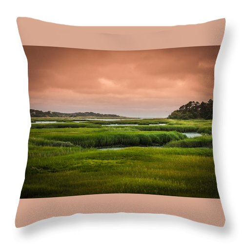 Duck Creek Marsh Throw Pillow featuring the photograph The Salt Marsh by Heather Hubbard