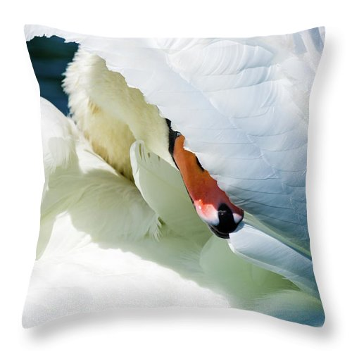 Mute Swan Throw Pillow featuring the photograph The Seductive Swan by Henry Kim