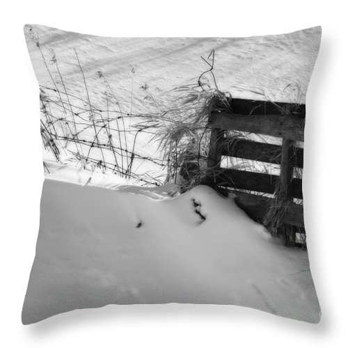 Snow Throw Pillow featuring the photograph The Snow Gate by Cathy Beharriell