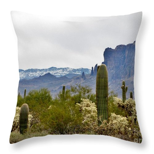Desert Throw Pillow featuring the photograph The Superstitions Landscape by Marilyn Smith