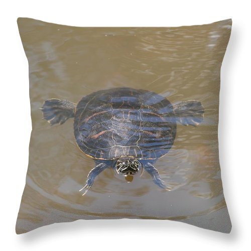 Water Throw Pillow featuring the photograph The Swimming Turtle by Rob Hans