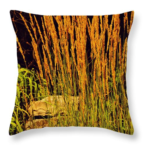 Photography With Textures Throw Pillow featuring the photograph The Tall Grass by Kathleen Sartoris