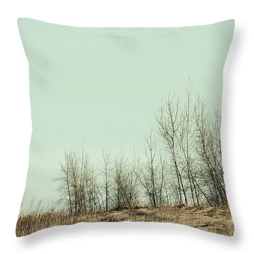 Trees Throw Pillow featuring the photograph The Things We Should Have Done To End Up Somewhere Else by Dana DiPasquale