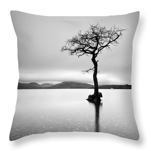 Loch Lomond Throw Pillow featuring the photograph The Tree by Grant Glendinning