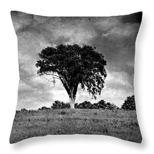 Tree Throw Pillow featuring the photograph The Tree by Scott Ward