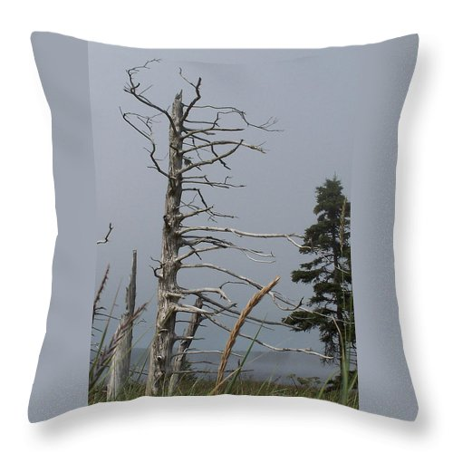 Tree Throw Pillow featuring the photograph The Trees Of Grand-manan by Frederic Durville