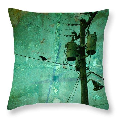 Urban Throw Pillow featuring the photograph The Urban Crow by Tara Turner