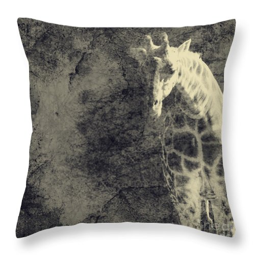 Dipasquale Throw Pillow featuring the photograph ...the Vast Expanses Of The Earth by Dana DiPasquale