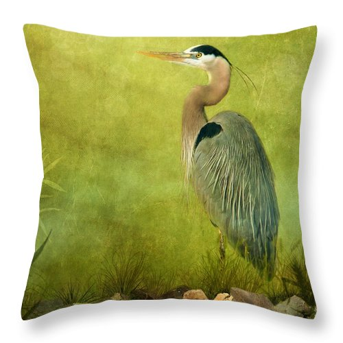 Great Blue Heron Throw Pillow featuring the photograph The Wait by Beve Brown-Clark Photography